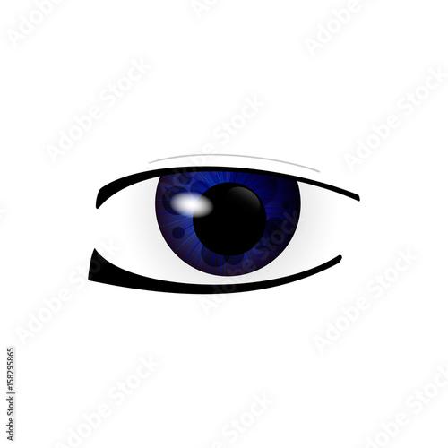 Eye. Human eyes closeup. Beautiful big eyes. Vector illustration - 158295865
