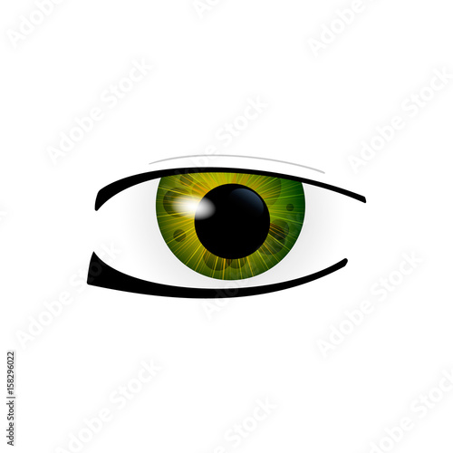 Eye. Human eyes closeup. Beautiful big eyes. Vector illustration - 158296022