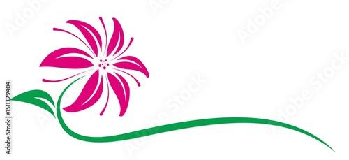 Fototapeta Lily Logo.