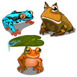 Set of three toads, different colors. Vector