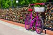 pink bike standing on the bridge of love