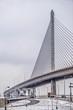 toledo ohio city skyline and bridges around downtown