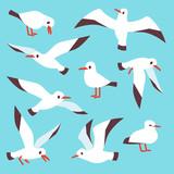 Cartoon atlantic seabird, seagulls flying in blue sky vector set