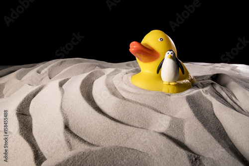 Donald Trump drive a penguin in the sand Poster