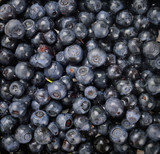 ripe juice blueberries as background