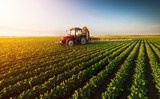 Tractor spraying soybean field at spring - 158463255