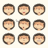 Set funny hedgehog in different poses. Collection isolated hedgehog in cartoon style for design children holiday and goods.