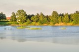 Spring afternoon landscape. A lake with green trees in the background.