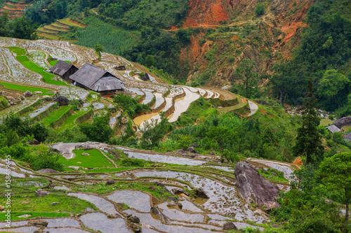 The farm in the mountains in Asia, Vietnam