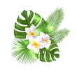 Tropical exotic flowers and leaves. Realistic vector illustration