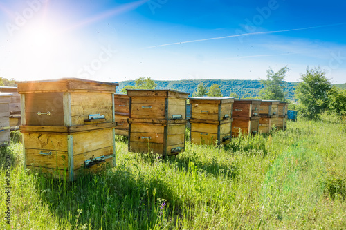 Fotobehang Bee Hives in an apiary with bees flying to the landing boards. Apiculture.