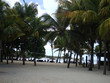Playa de la Isla Mauricio
