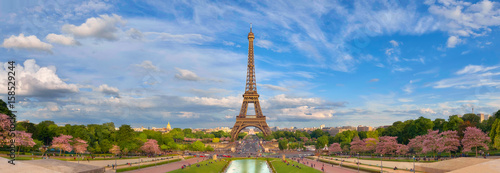 Poster Panoramic image of Eiffel tower from Trocadero in Spring.