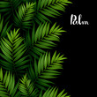 Tropical palm green leaves seamless pattern border on the black background.
