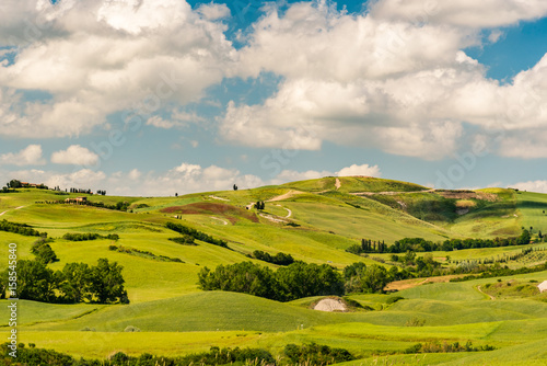Poster Honing The countryside near the famous town of Volterra, Tuscany, Italy in spring