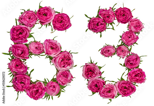 Poster Arabic numeral 63, sixty three, from red flowers of rose, isolated on white back