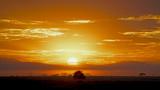 Sun rising through rain clouds in Serengeti, Tanzania