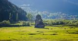 mystic stone and farm animals at sunset, Poiana Largului. Romania