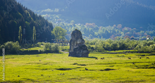 mystic stone and farm animals at sunset, Poiana Largului. Romania