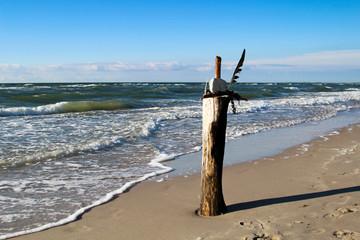 Holzpfahl im Sand am Strand, Ostsee, Reisen, Urlaub, Erholung