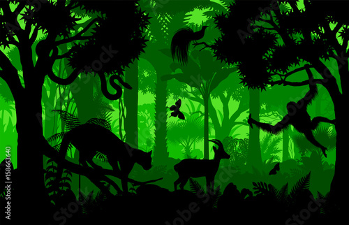 Fotobehang Groene Vector evening indonesian tropical rainforest Jungle background with clouded leopard, gazelle, python, paradise bird and orangutan