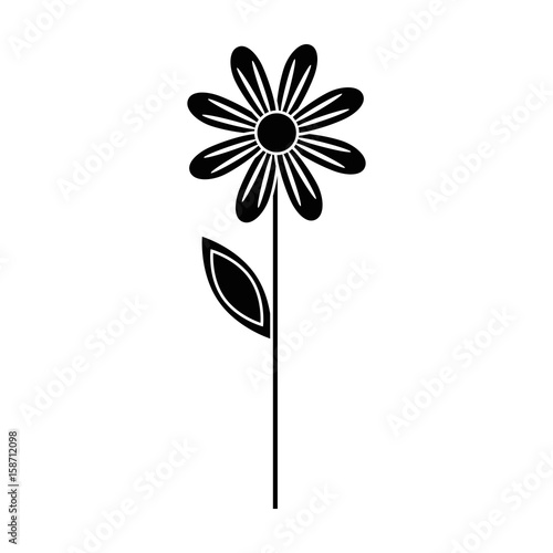 Beautiful flower gardening icon vector illustration graphic design