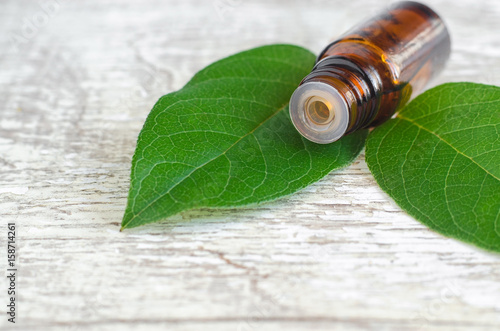 Small bottle of essential oil and fresh leaves on the wooden background Poster