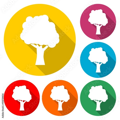 Tree Icon Flat Graphic Design - Illustration
