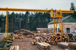 Wood logging, sorting, transportation and processing on sawmill