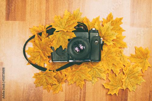 Cámara analógica sobre hojas otoñales © nanihta