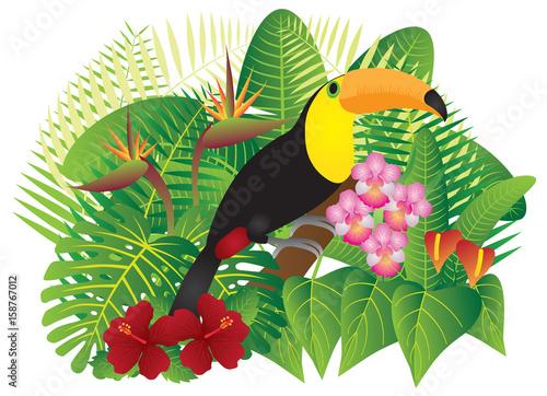 Pieprzojad w Tropikalnym lesie z ulistnieniem i kwiatami Barwi wektorową ilustrację