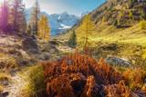 Herbstlandschaft in den österreichischen Bergen