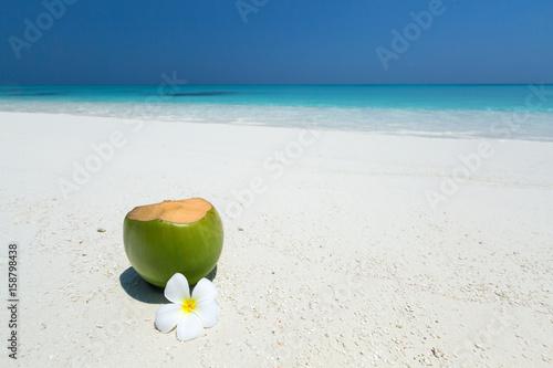 Fresh coconut juice decorated tropical plumeria flower