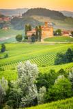 Langhe, Piedmont, Italy.