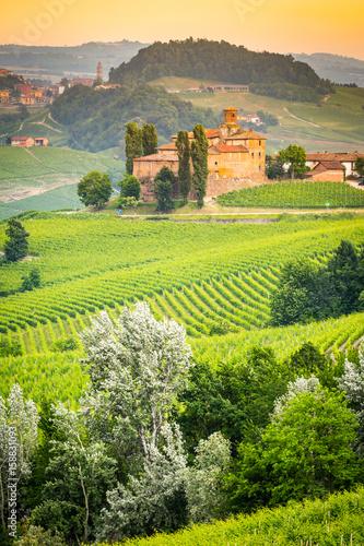 Fotobehang Grijs Langhe, Piedmont, Italy.