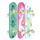 Skateboard collection isolated on white background. Vector illustration