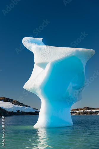 Foto op Aluminium Antarctica Very unusual tall iceberg in Antarctica. Looks like a human head.