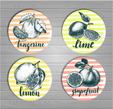 Set of round stickers with citrus fruits. Labels with hand drawn elements and brush calligraphy style lettering. Vector illustration. - 158879263