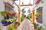 Patio à Cordoue, Andalousie  - 158891059