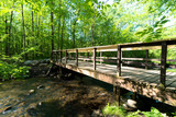 Hiking Bridge over River