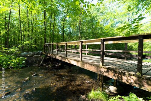 Plakat Hiking Bridge over River