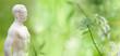 Quadro Akupunkturmodell im Grünen