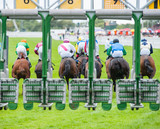 Horse Race sprinting out of the start gate - 159016674