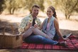Quadro Young couple holding wine glasses while sitting on field at olive farm