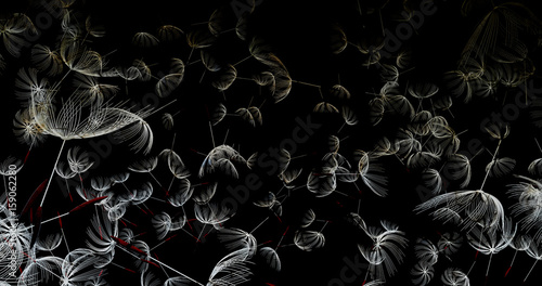 3d rendering of dandelion blowing silhouette. Flying blow dandelion buds black outdoor decoration on white