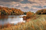 Озеро в лесной зоне - 159077411