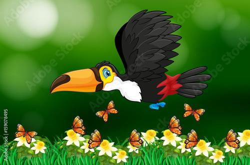 Fotobehang Groene Toucan bird flying in garden