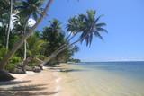 Strand in Mikronesien