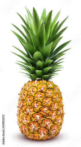 Pineapple isolated. One whole pineapple with green leaves isolated on white background with clipping path - 159155075