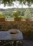 Schüssel mit Trauben in der Toskana